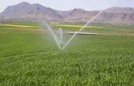 اعلام بهره برداری از پروژه های بخش کشاورزی شهرستان سقز در دهه فجر