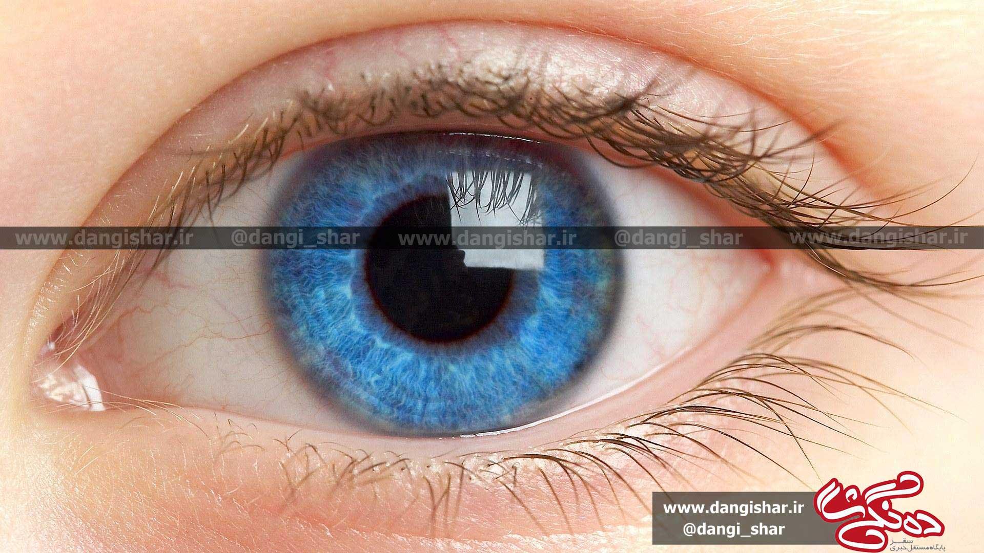 سرطان چشم؛ مهمان ناخوانده فضای مجازی/ وقتی سرطان کاربران تلگرام را تهدید میکند