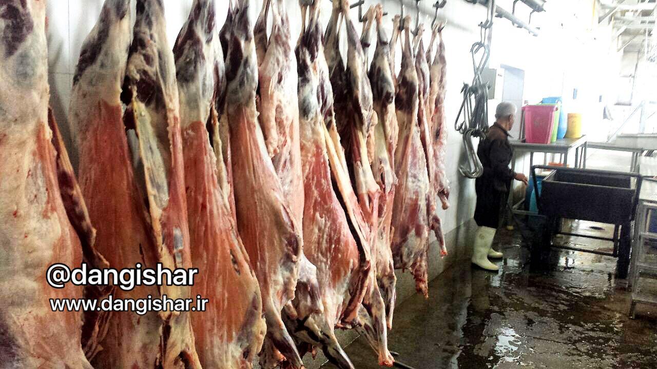 علت كمبود گوشت در چند روز گذشته در سقز مشخص شد