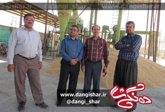 کسب رتبه برتر توسط شرکت تعاونی روستایی صاحب سقز در استان کردستان